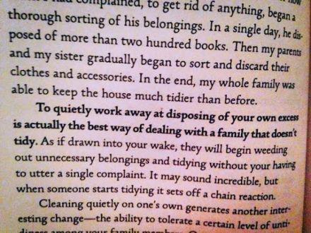 me tidy book excerpt